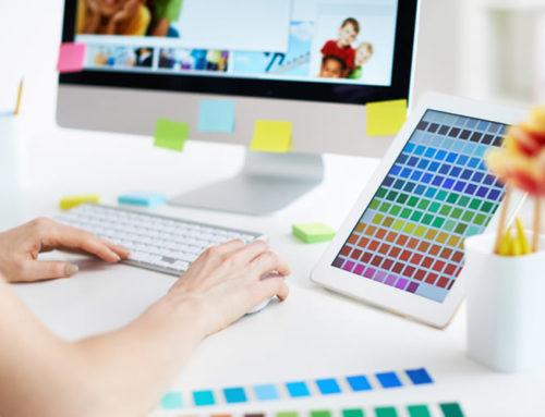 Diferença Entre Desenvolvedor Web e Web Designer