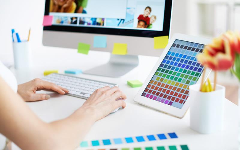 Qual a diferença entre Desenvolvedor Web e Web Designer?